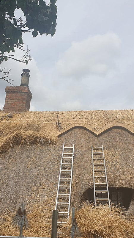 Our Roof Thatching Services