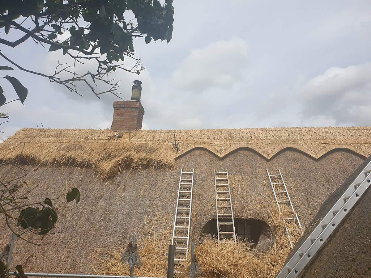 Roof Thatching Services