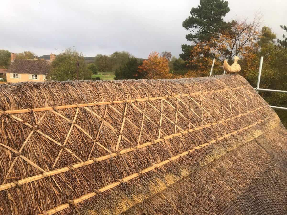 Thatching job in Stonely Cambridgeshire (2)