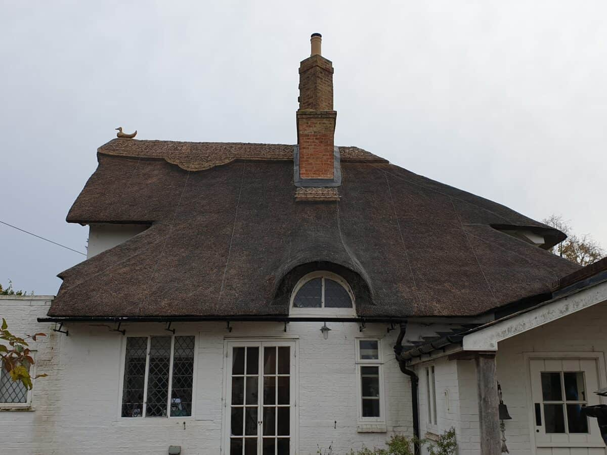 Thatching job in Stonely Cambridgeshire (3)