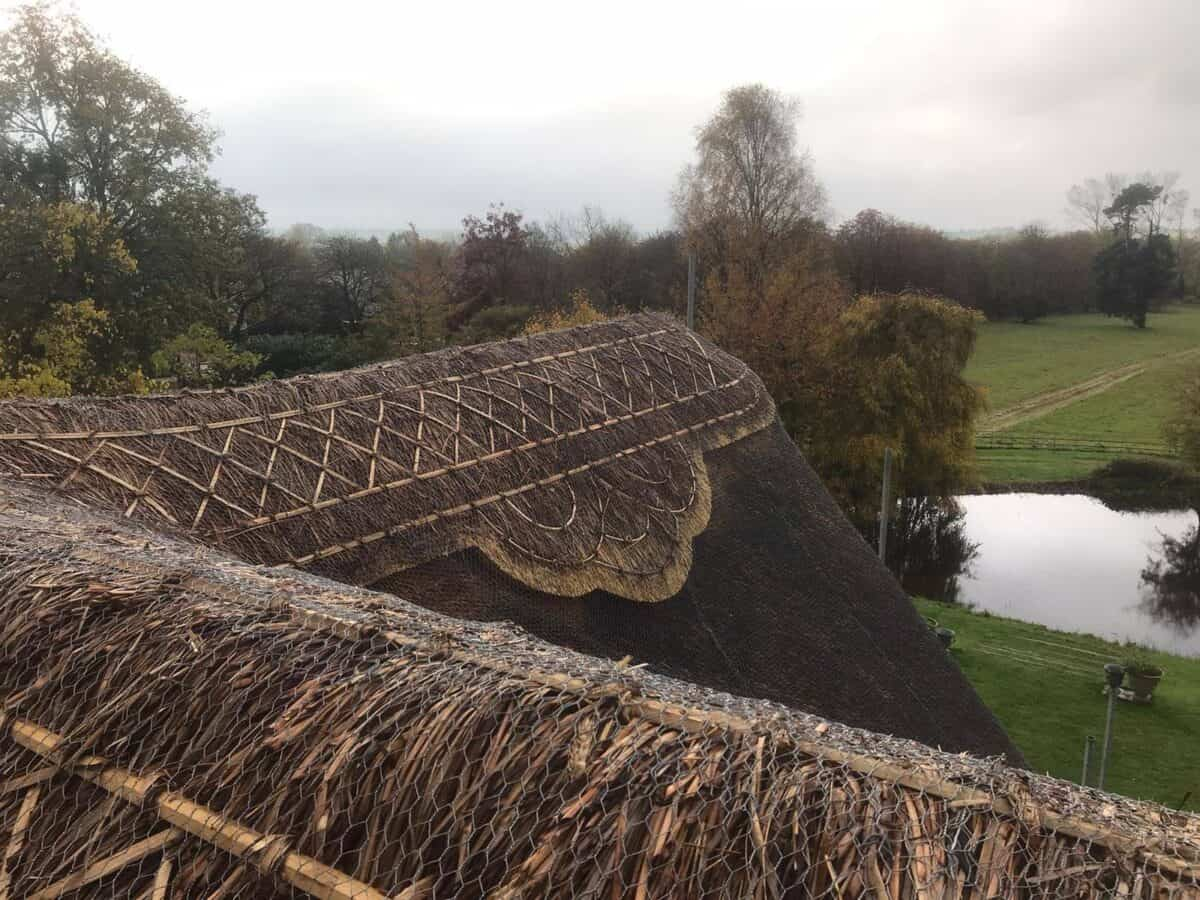 Thatching job in Stonely Cambridgeshire (6)
